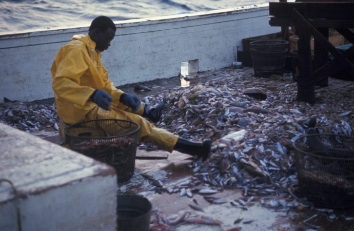 Nigeria, others lose $2 billion to illegal activities at sea yearly
